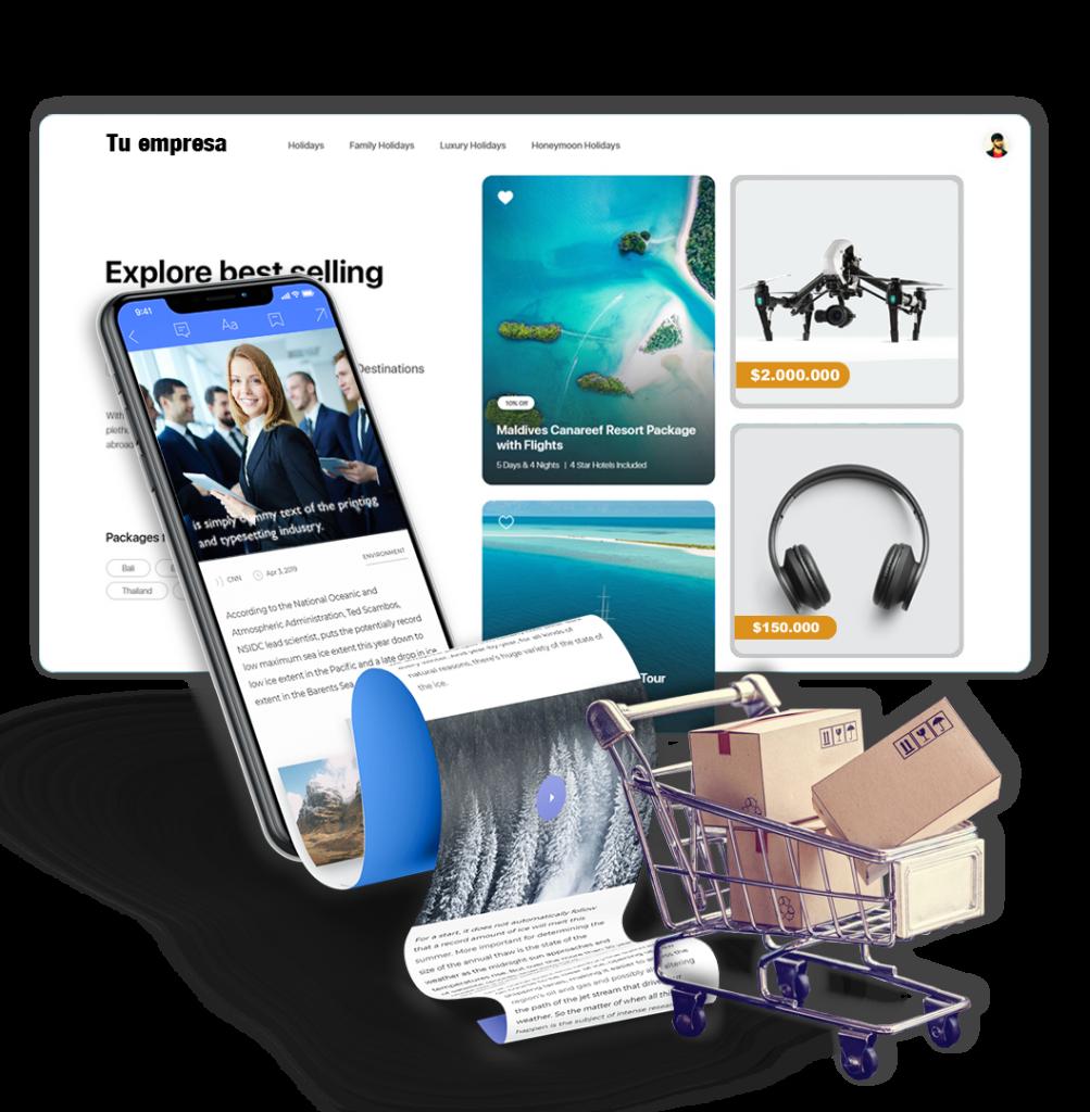 diseño web plan pyme